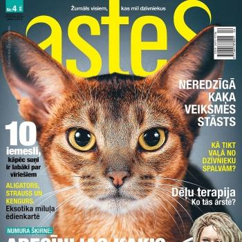 Žurnāls ASTES