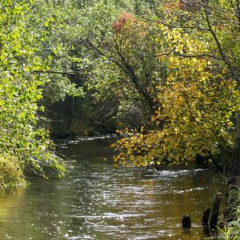 Līgatnes upe
