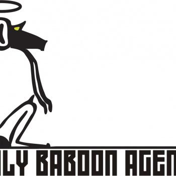 Holy Baboon Agency